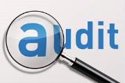 Image representing the service provider: Audit (15-01-2015_1831)