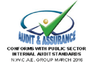 Image representing the service provider: Audit Assurance (21-06-2016_1207)