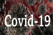 Image representing the news: CANDO-0320-A003_COVID-19 v3