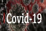 Image representing the news: CANDO-0320-A006_COVID-19 v2
