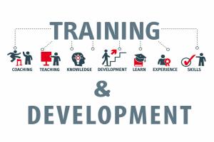 Image representing the news: eCWIP-0719-A002_training-development-courses-ctec
