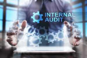 Image representing the service provider: Internal Audit (30-07-2019_1542)