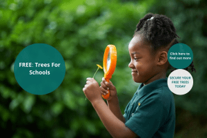 Image representing the news: LSP-1019-A001_FREE - Trees For Schools
