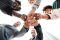 Image representing the contract: Adults group teamwork fist bump_A