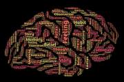 Image representing the resource page: Brain mind word art thoughts feelings_A