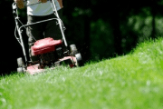 Image representing the service provider: grounds maintenance (27-11-2013_0907)