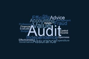 Image representing the service provider: Audit - Option 1 (26-02-2018_1107)