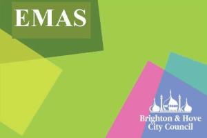 Image representing the service provider: EMAS logo (23-09-2015_1525)