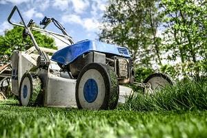 Image representing the service provider: lawnmower-384589_640 (07-12-2015_1603)