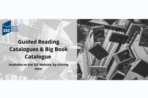 Image representing the news: SSE-RFL-1119-A001_Guided Reading Catalogues