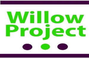 Image representing the service provider: Willowproject (04-02-2019_1650)