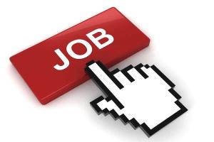 Image representing the service provider: 124376776 online recruitment (17-12-2018_1431)