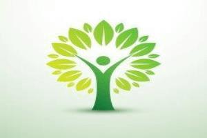 Image representing the service provider: Tree (01-09-2016_1650)