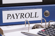 Image representing the service provider: Payroll (23-02-2017_1441)