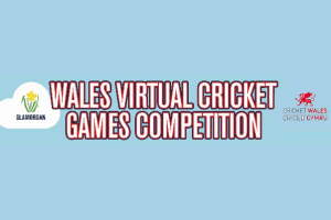 Image representing the news: CES-0620-A002_Cricket Competition Image